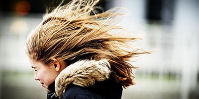 У Києві буде перший рівень небезпечності через сильний вітер